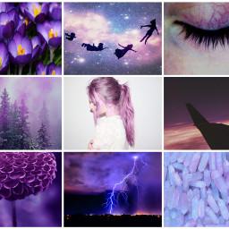 violet purple tumblr