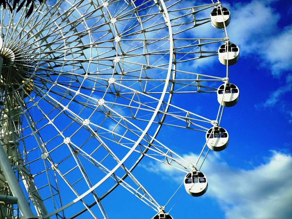 let it go round and see the beauty of it   #ferriswheel  #amusementpark