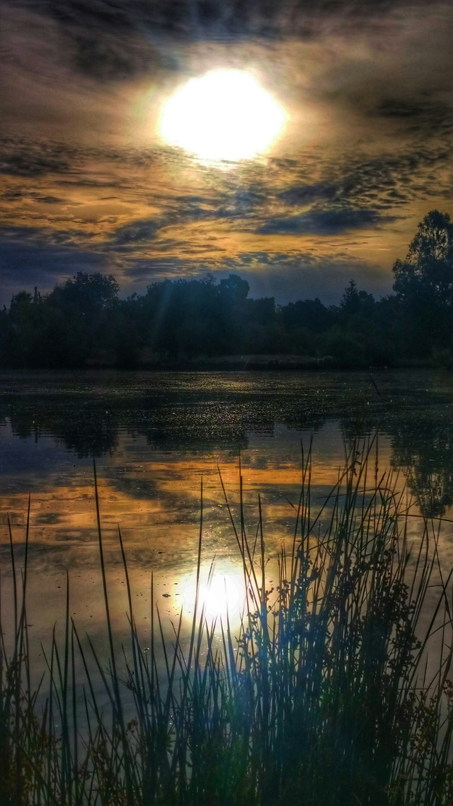 #autumn #photography #nature #ponds