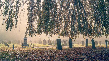 netherlands cemetery autumn Leeuwarden