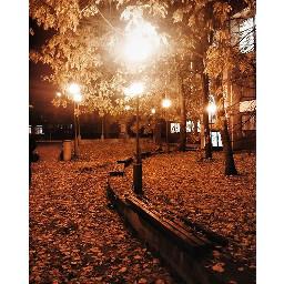 autumn autumnleaves night lamp lamps