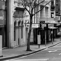 blackandwhite photography travel australia sydney