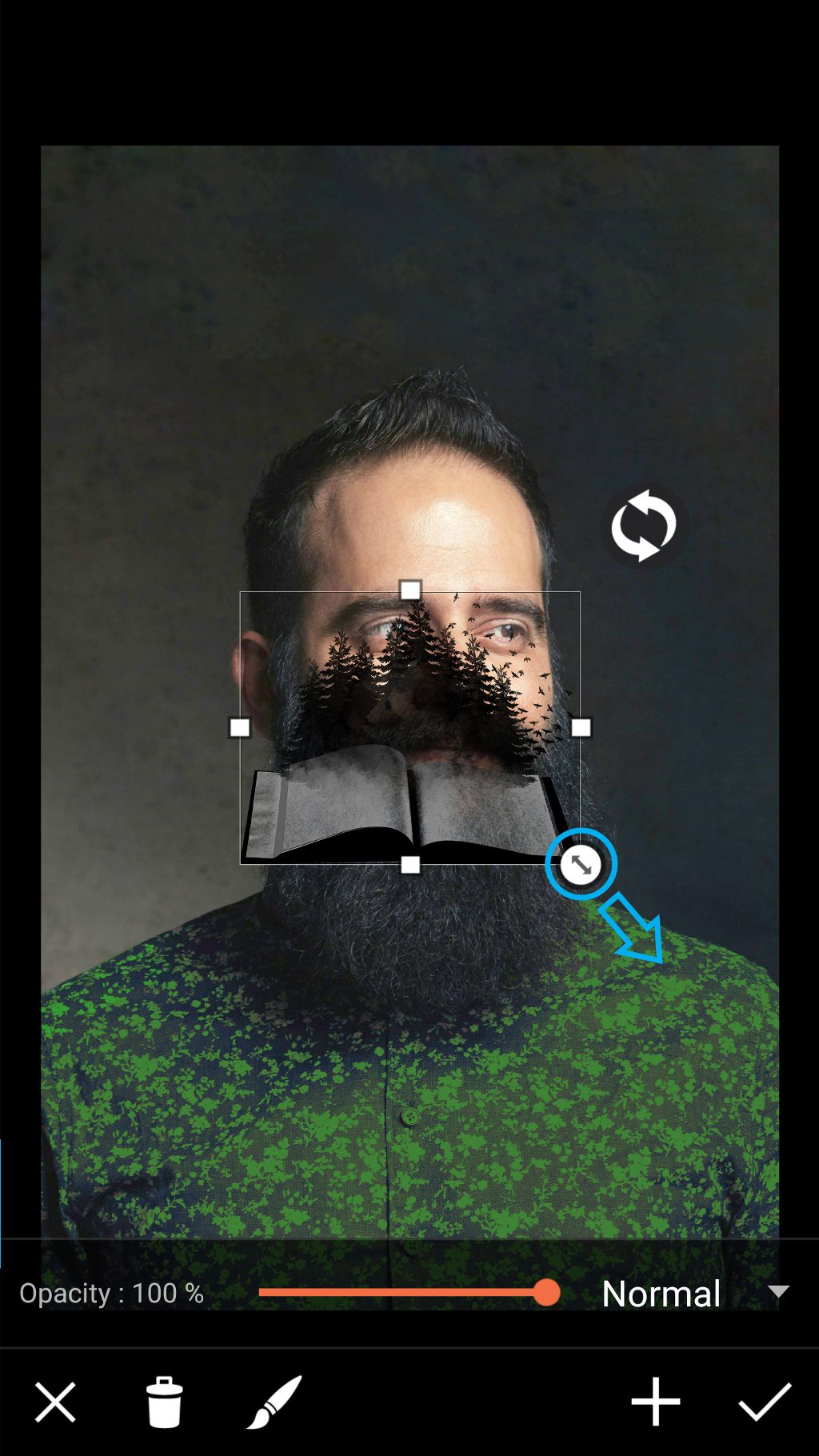 adjust clipart image