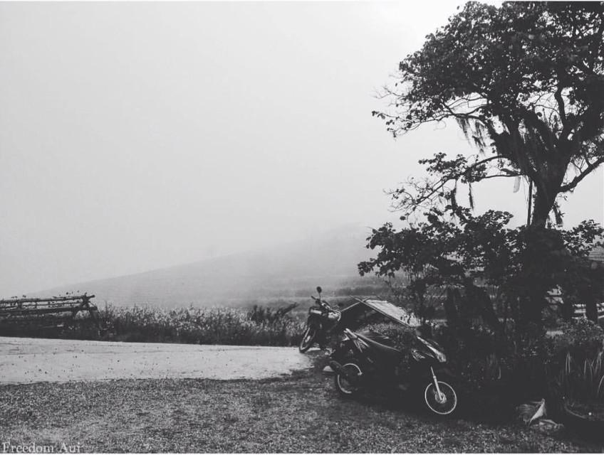 #interesting #art #mist #blackabdwhite #travel #traveltreasures #traveling #travelling #freetoedit