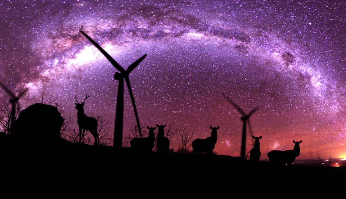 Deers under the #purple sky   #Milkyway #Galaxy #stars #night #clipart #sky   Thank again dear team @pa always encouraged me and showing my art to the world !!! I'm so thankful !!! 😘❤🙋😇💕  thanks for choosing my pic as one of the best in daily inspiration #Purple