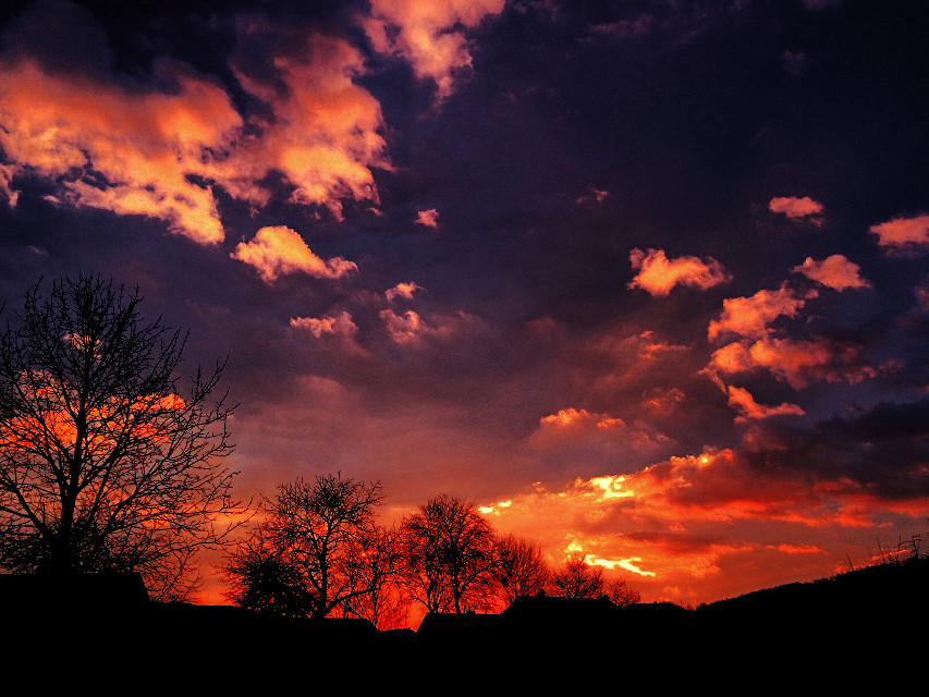 #sunset #colorful #trees #clouds #wppsky