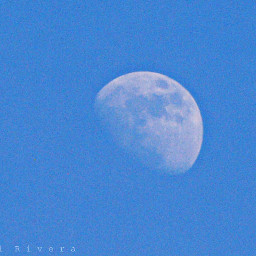 moon photography nature cute