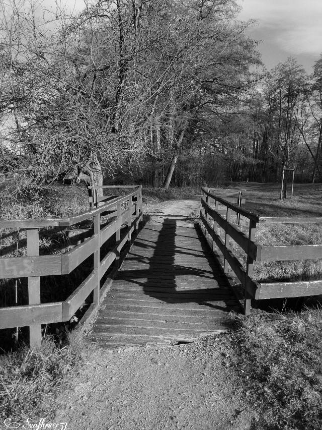 #blackandwhite #photography #nature  #bridge