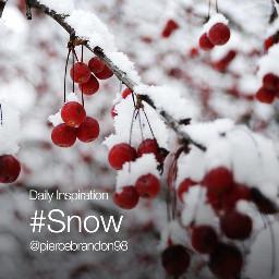 dailyinspiration snow