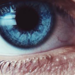 eyes blue macrophotography