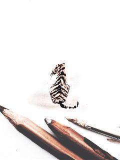 interesting art madewithpicsart tiger feline