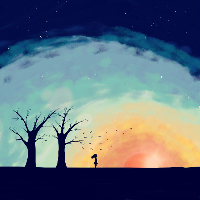 #wdptreeline #silouhette #trees #sunset