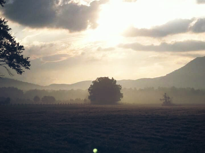 #nature  #cadescove #anniversary #love #gatlinburg
