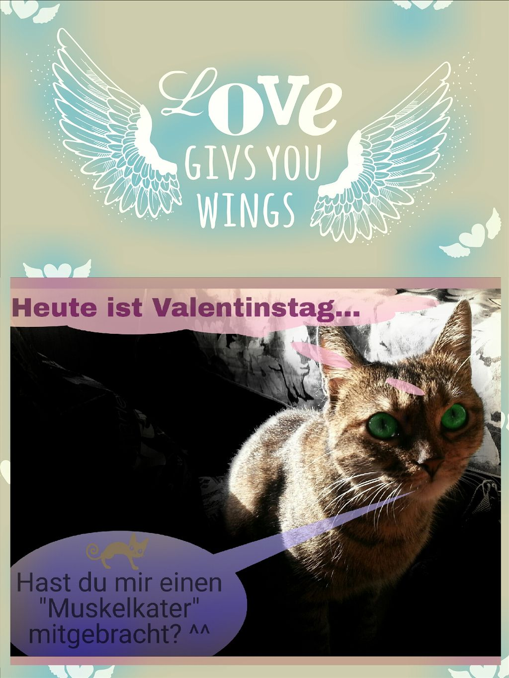 Valentinsday Valentinstag Cat Cute Love Funny Quotesand