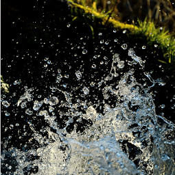 freetoedit nature photography drops water