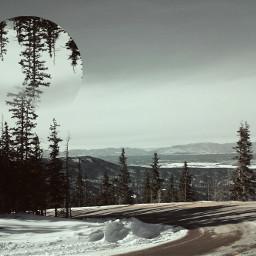 nature photography retro snow travel