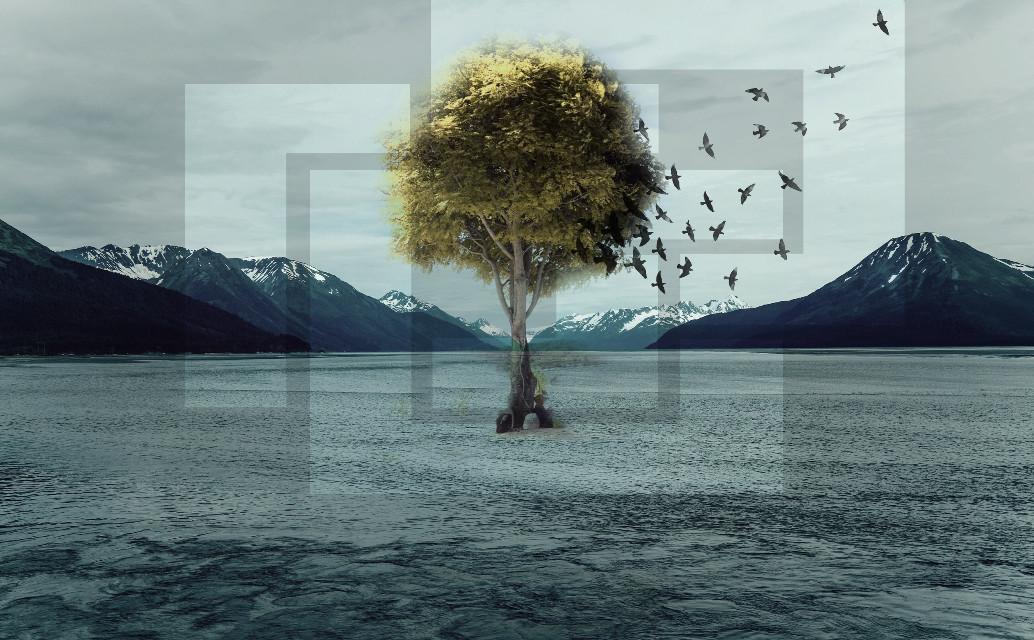 #art #interesting #trees
