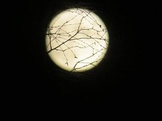 foolmoon moon täysikuu finland mäntyharju