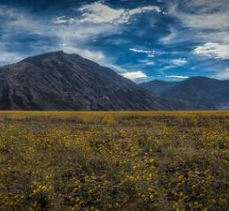 deathvalley superbloom mountain clouds landscape