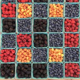 freetoedit fruit fruits colors