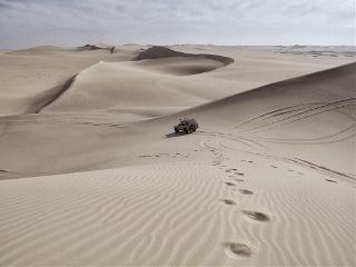 freetoedit desert
