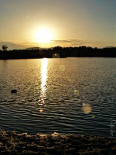 sunset sea lensflare