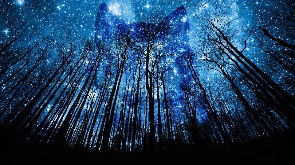 Wolf galaxy forest blue