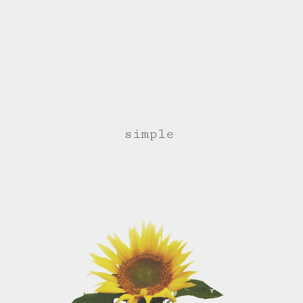 #freetoedit #simple#minimal#words#flower #photography#lines#tanu #paphotochallenge