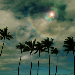 beach colorful tropical landscape hawaiiphotography
