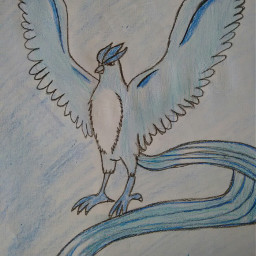 pokemon articuno drawing ilovepokemon