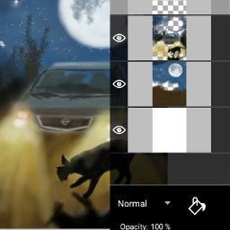 moon car cat