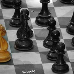 photography blackandwhite chess alone freetoedit