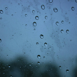 dews rain rainydays missya
