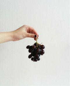 photography hand minimalist minimalism fruit freetoedit