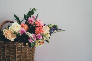 freetoedit flowers pink design vase